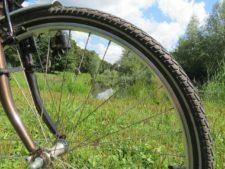 Bike wheel rolling through grass